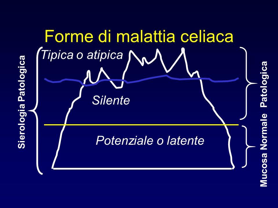 Forme di malattia celiaca Tipica o atipica Silente Potenziale o latente Sierologia Patologica Mucosa Normale Patologica