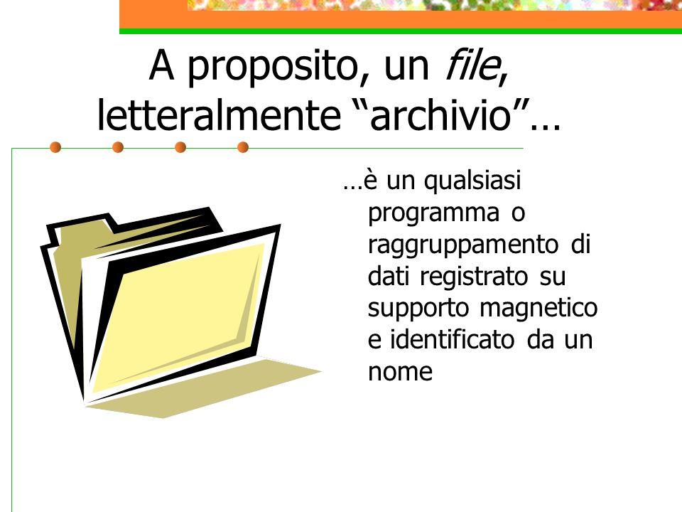 A proposito, un file, letteralmente archivio… …è un qualsiasi programma o raggruppamento di dati registrato su supporto magnetico e identificato da un nome