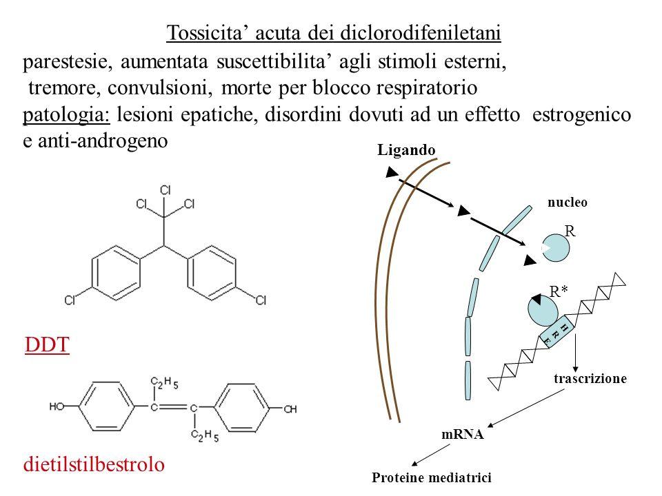 Tossicita acuta dei diclorodifeniletani parestesie, aumentata suscettibilita agli stimoli esterni, tremore, convulsioni, morte per blocco respiratorio