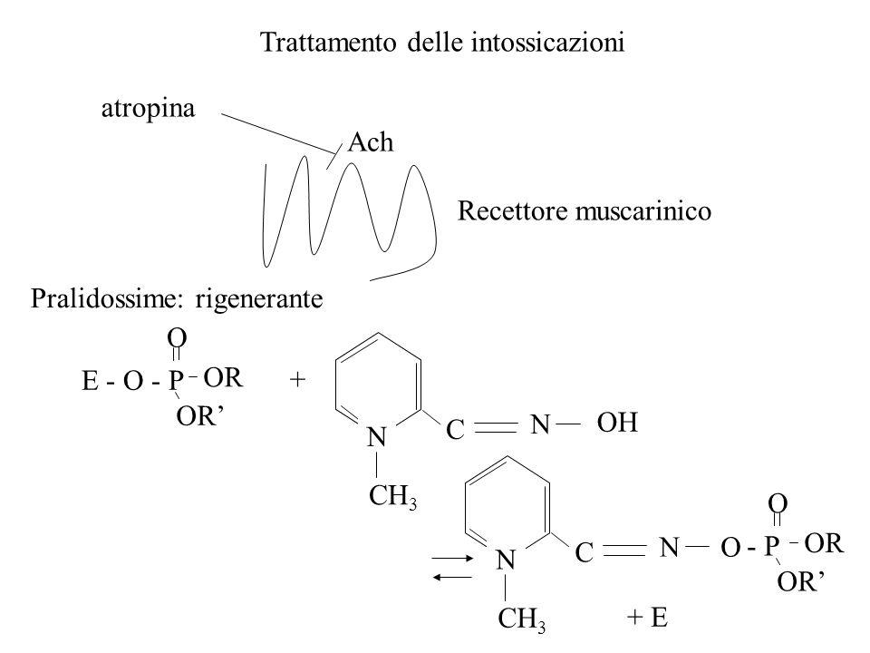 Trattamento delle intossicazioni atropina Ach Recettore muscarinico Pralidossime: rigenerante E - O - P O OR + N CH 3 C N OH N CH 3 C NO - P O OR + E