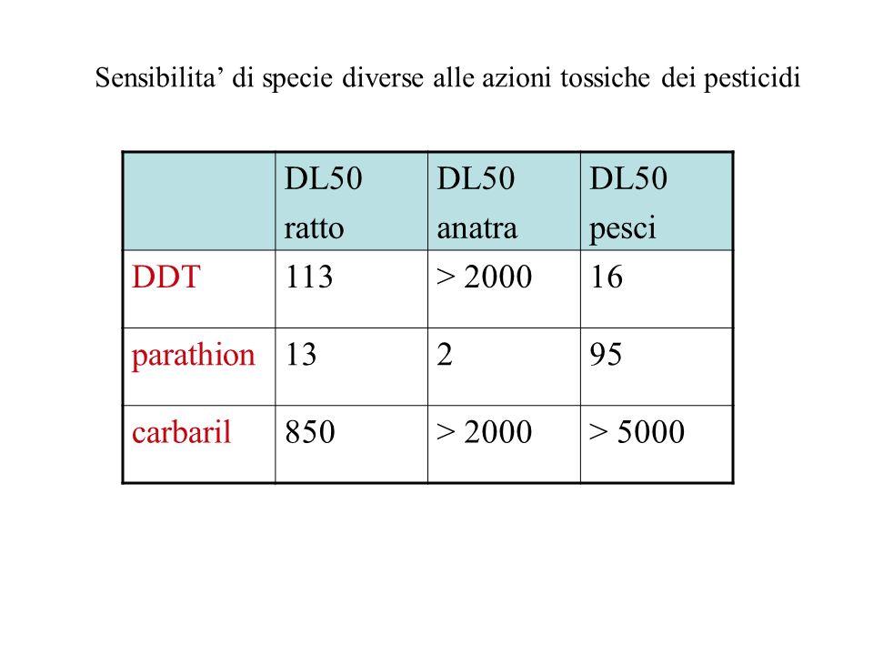 Sensibilita di specie diverse alle azioni tossiche dei pesticidi DL50 ratto DL50 anatra DL50 pesci DDT113> 200016 parathion13295 carbaril850> 2000> 50