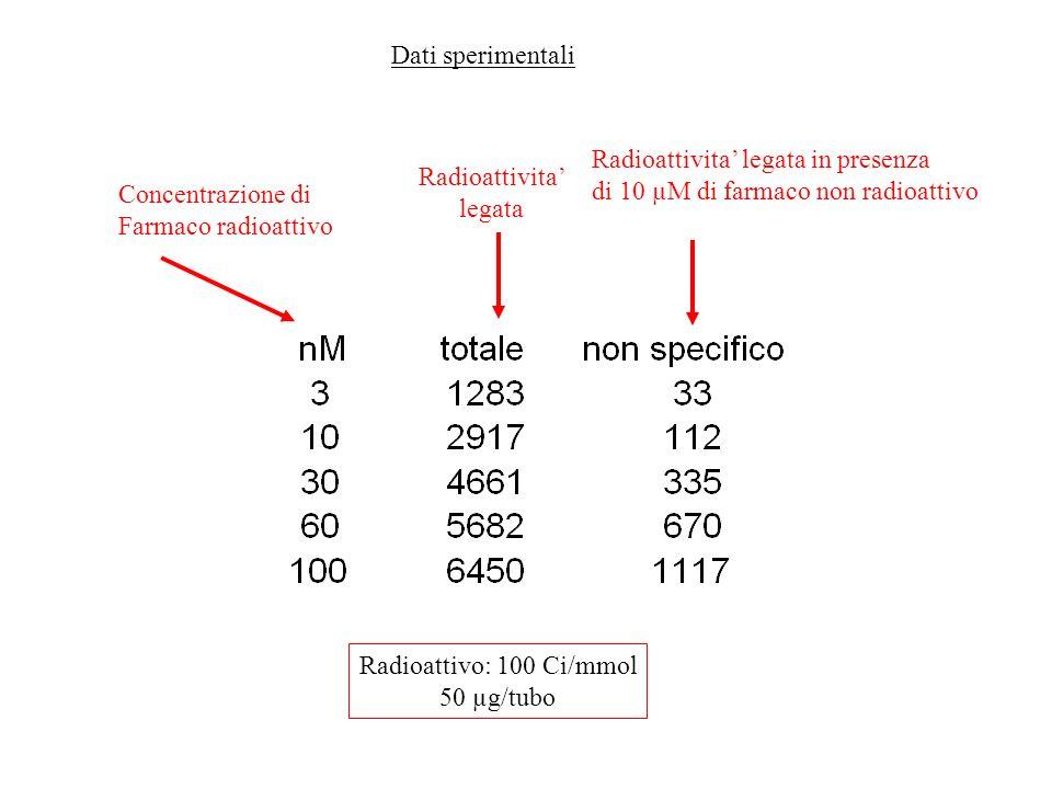Concentrazione di Farmaco radioattivo Radioattivita legata Radioattivita legata in presenza di 10 µM di farmaco non radioattivo Radioattivo: 100 Ci/mm