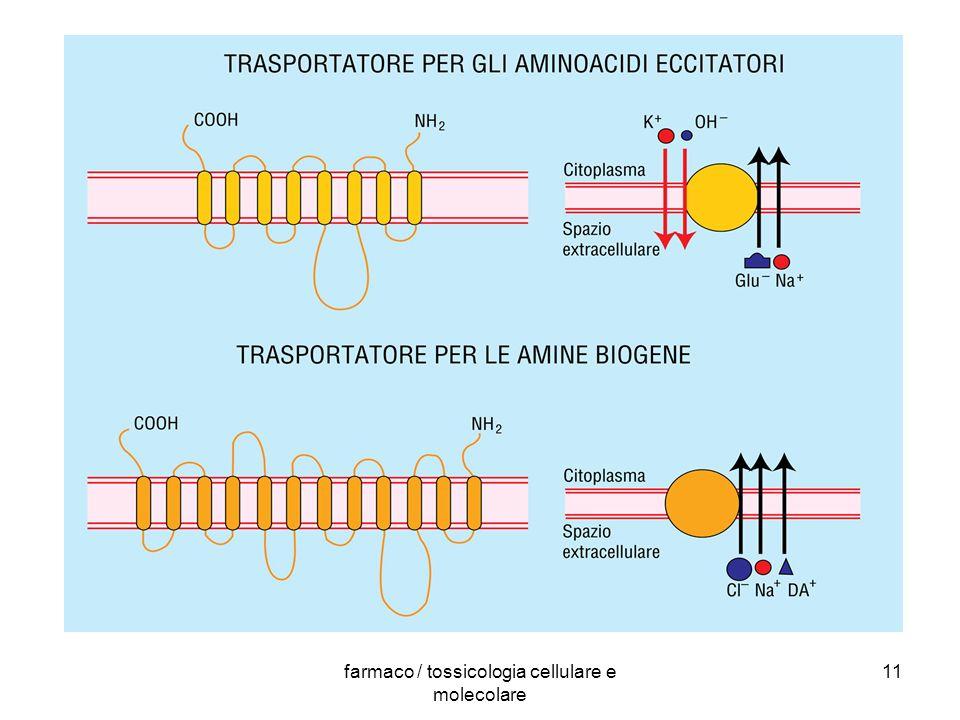 farmaco / tossicologia cellulare e molecolare 11