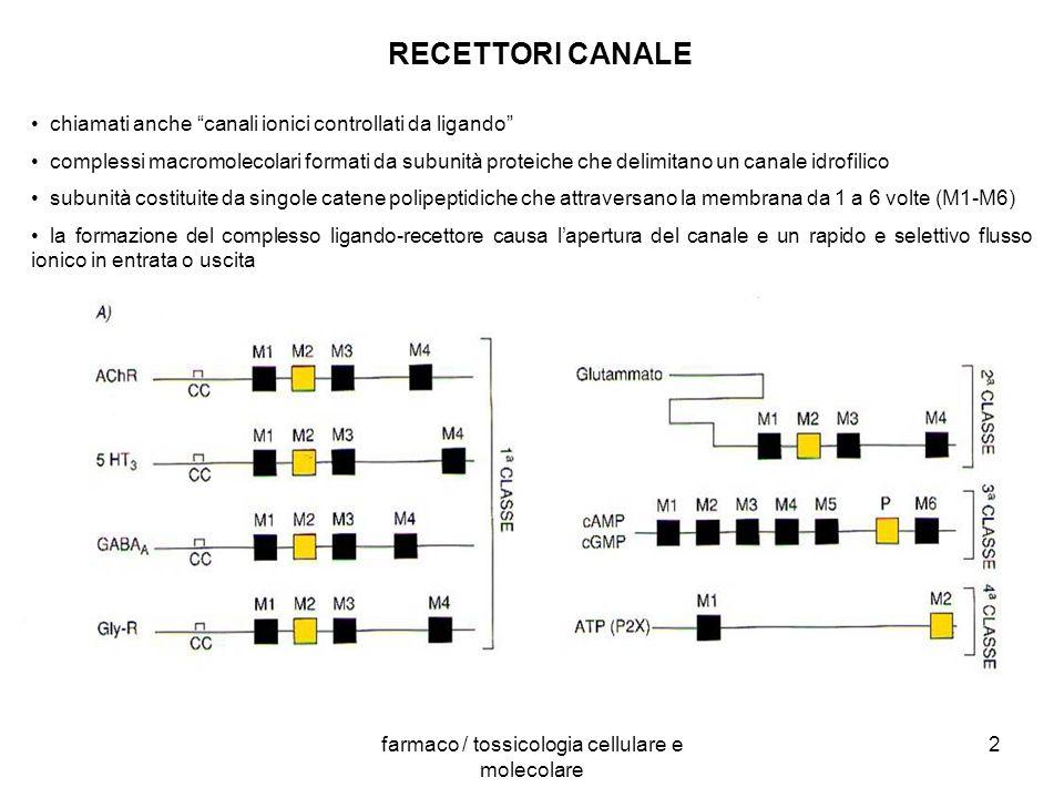 farmaco / tossicologia cellulare e molecolare 2 RECETTORI CANALE chiamati anche canali ionici controllati da ligando complessi macromolecolari formati