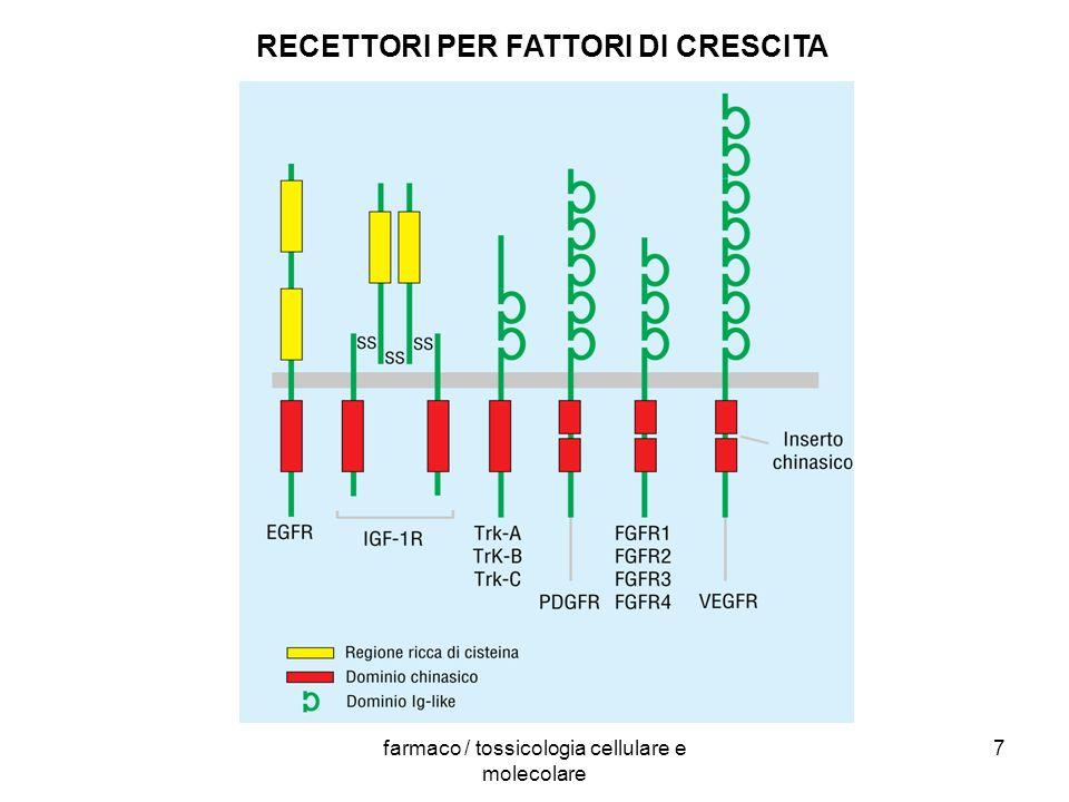 farmaco / tossicologia cellulare e molecolare 7 RECETTORI PER FATTORI DI CRESCITA