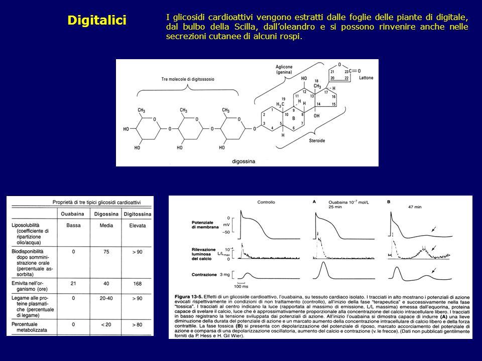Digitalici I glicosidi cardioattivi vengono estratti dalle foglie delle piante di digitale, dal bulbo della Scilla, dalloleandro e si possono rinvenir