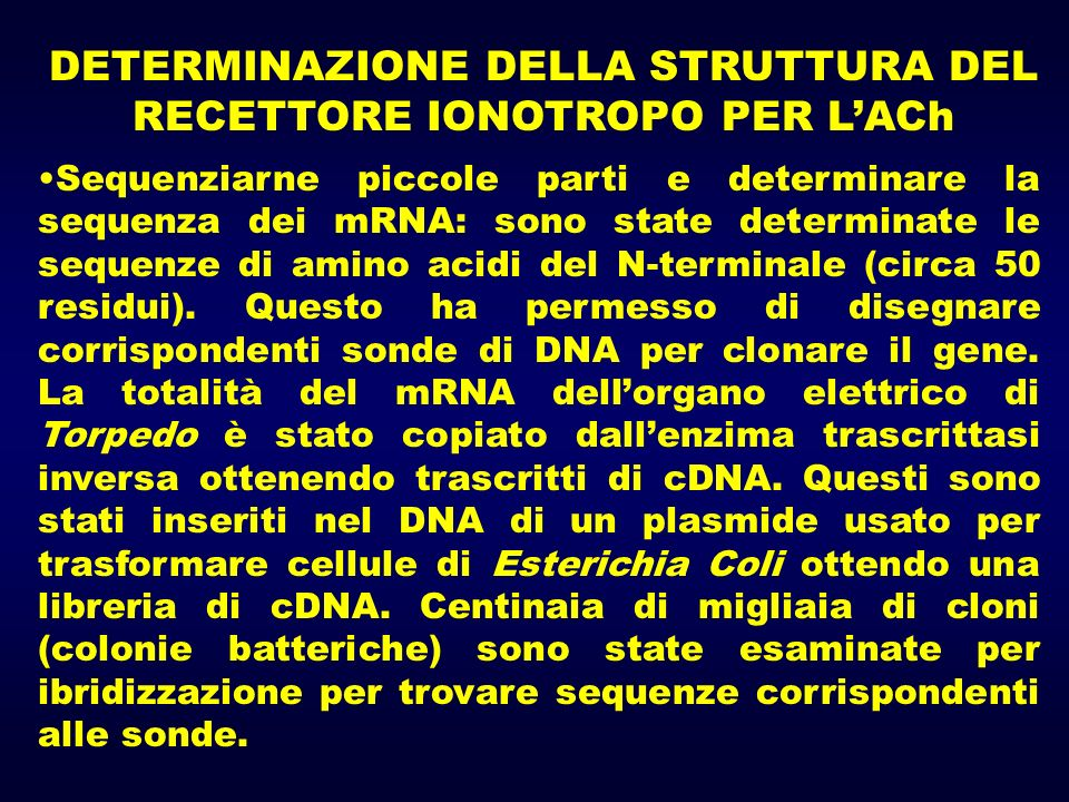 Sequenziarne piccole parti e determinare la sequenza dei mRNA: sono state determinate le sequenze di amino acidi del N-terminale (circa 50 residui). Q