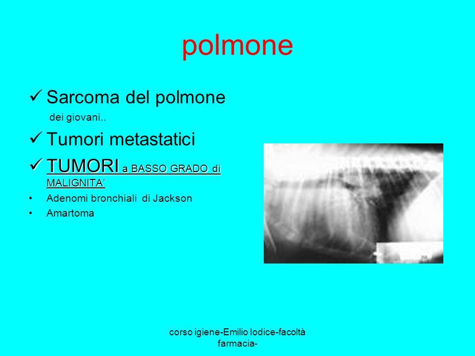 corso igiene-Emilio Iodice-facoltà farmacia- polmone Sarcoma del polmone dei giovani.. Tumori metastatici TUMORI a BASSO GRADO di MALIGNITA TUMORI a B