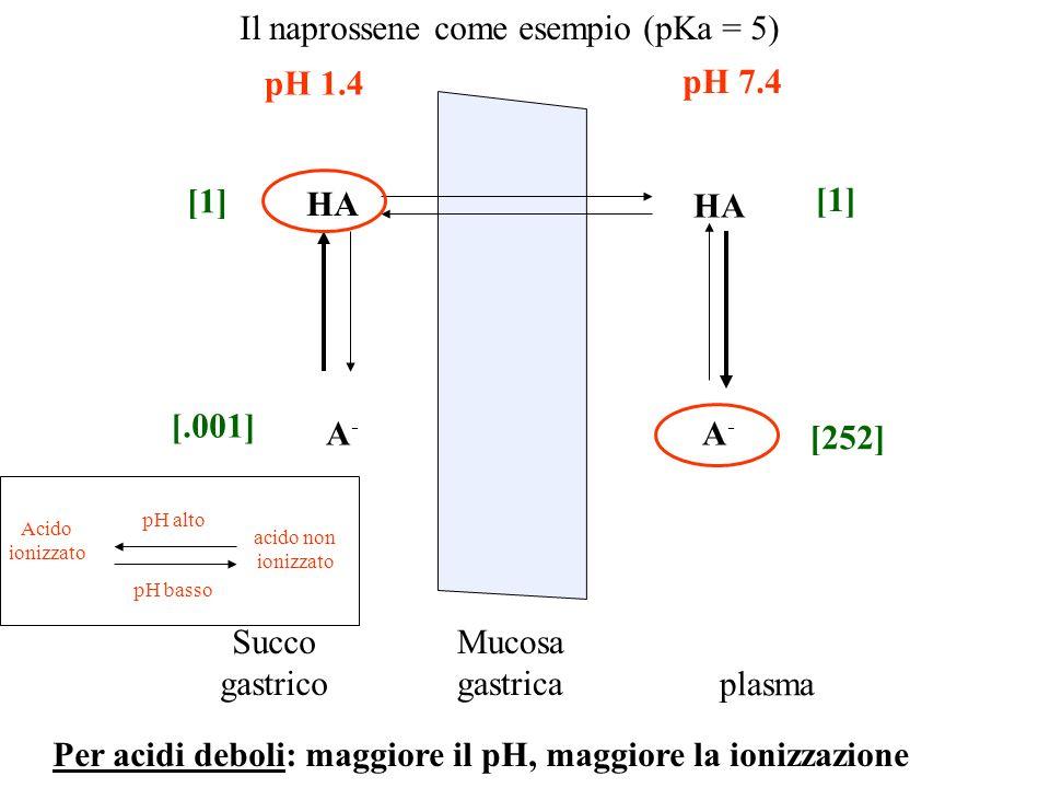 Il naprossene come esempio (pKa = 5) Mucosa gastrica Succo gastrico plasma pH 1.4 pH 7.4 HA A-A- A-A- Acido ionizzato acido non ionizzato pH alto pH b