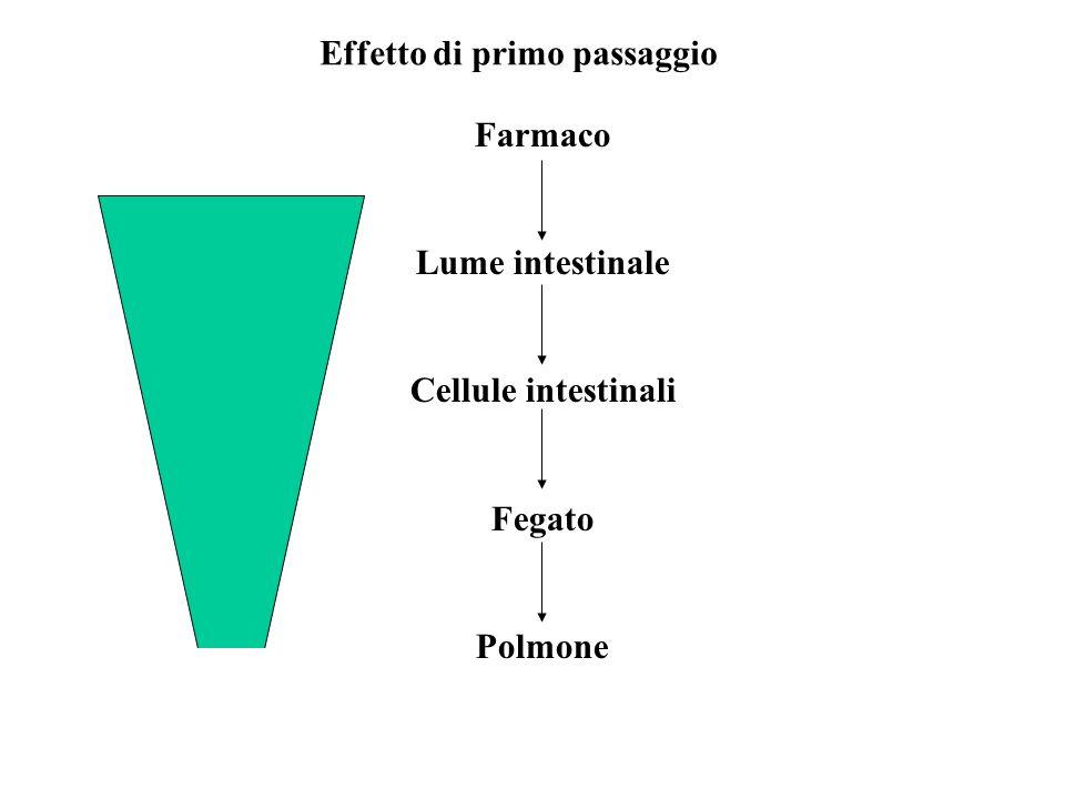 Effetto di primo passaggio Farmaco Lume intestinale Cellule intestinali Fegato Polmone