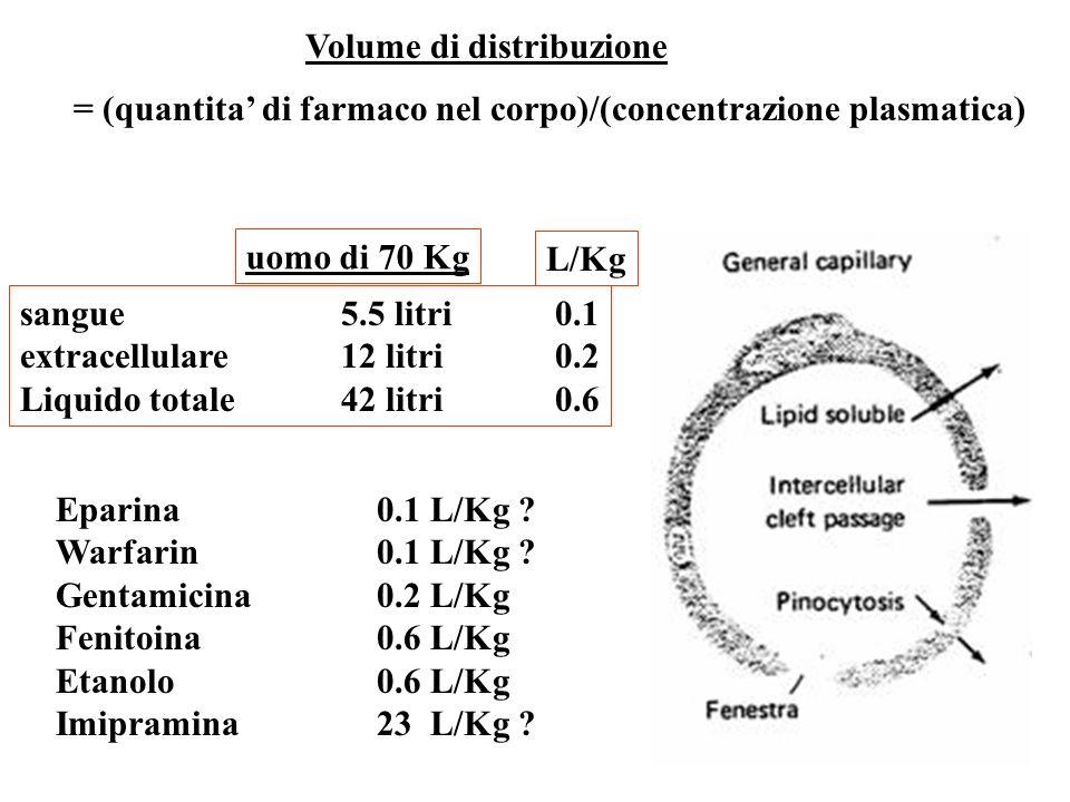 Volume di distribuzione = (quantita di farmaco nel corpo)/(concentrazione plasmatica) uomo di 70 Kg sangue 5.5 litri0.1 extracellulare12 litri0.2 Liqu