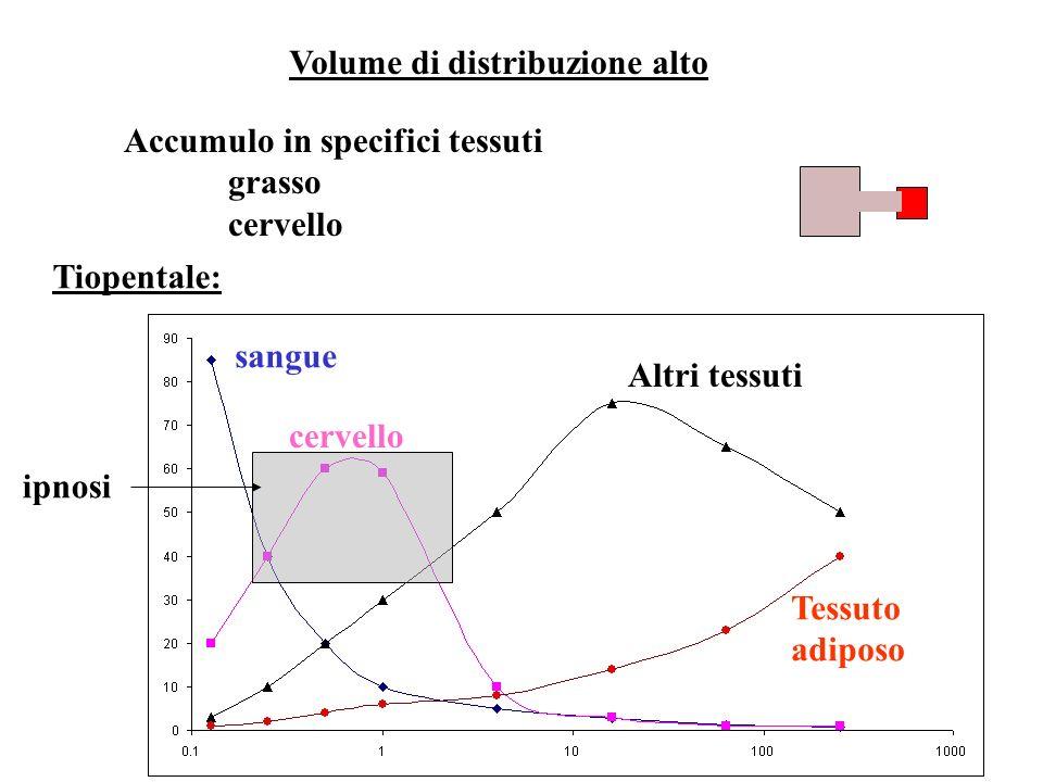 Volume di distribuzione alto Accumulo in specifici tessuti grasso cervello Tiopentale: sangue cervello Altri tessuti Tessuto adiposo ipnosi