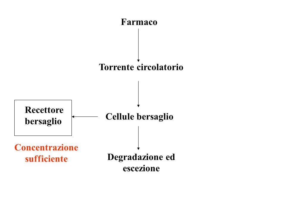 Farmaco Torrente circolatorio Cellule bersaglio Recettore bersaglio Degradazione ed escezione Concentrazione sufficiente