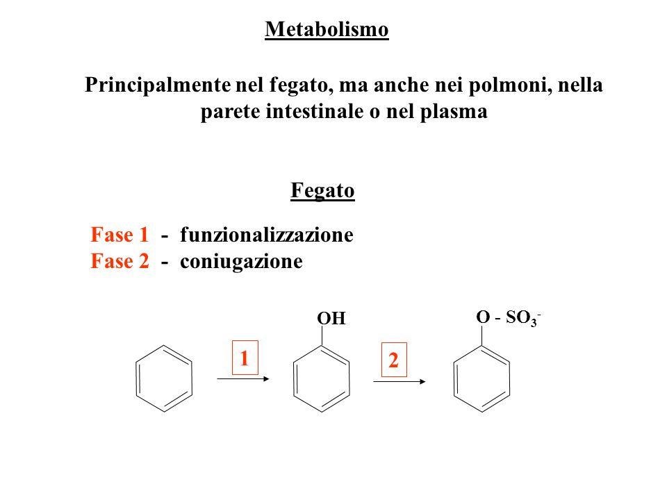 Metabolismo Fase 1 - funzionalizzazione Fase 2 - coniugazione Principalmente nel fegato, ma anche nei polmoni, nella parete intestinale o nel plasma F