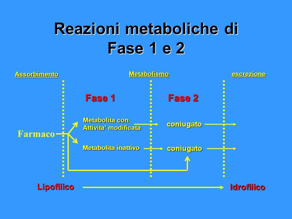Reazioni metaboliche di Fase 1 e 2 Fase 1 Assorbimento Metabolita con Attivita modificata Metabolita inattivo Metabolismo Lipofilico Idrofilico Fase 2