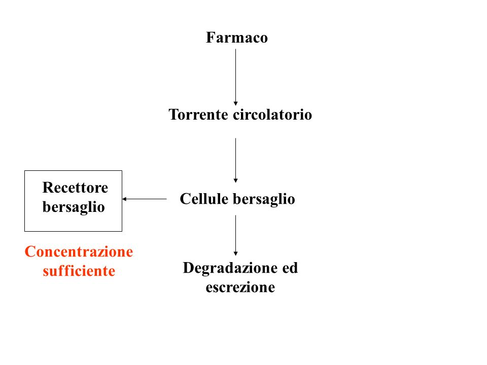 Farmaco Torrente circolatorio Cellule bersaglio Recettore bersaglio Degradazione ed escrezione Concentrazione sufficiente