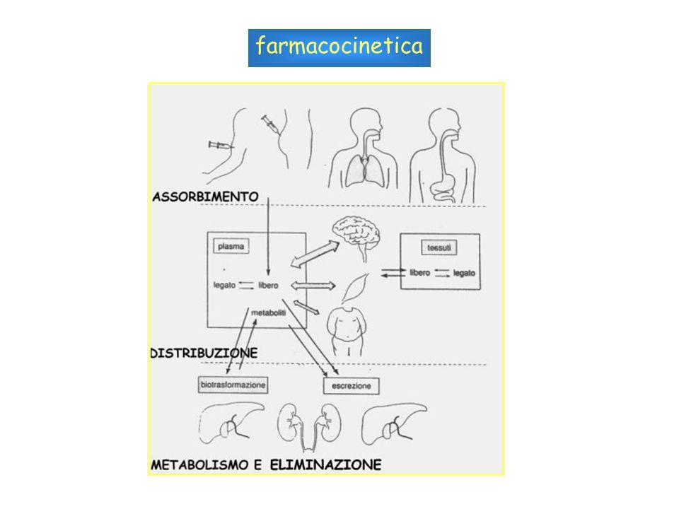 Induzione e regolazione di CYP3A iperforina, ingrediente naturale dellerba di S.