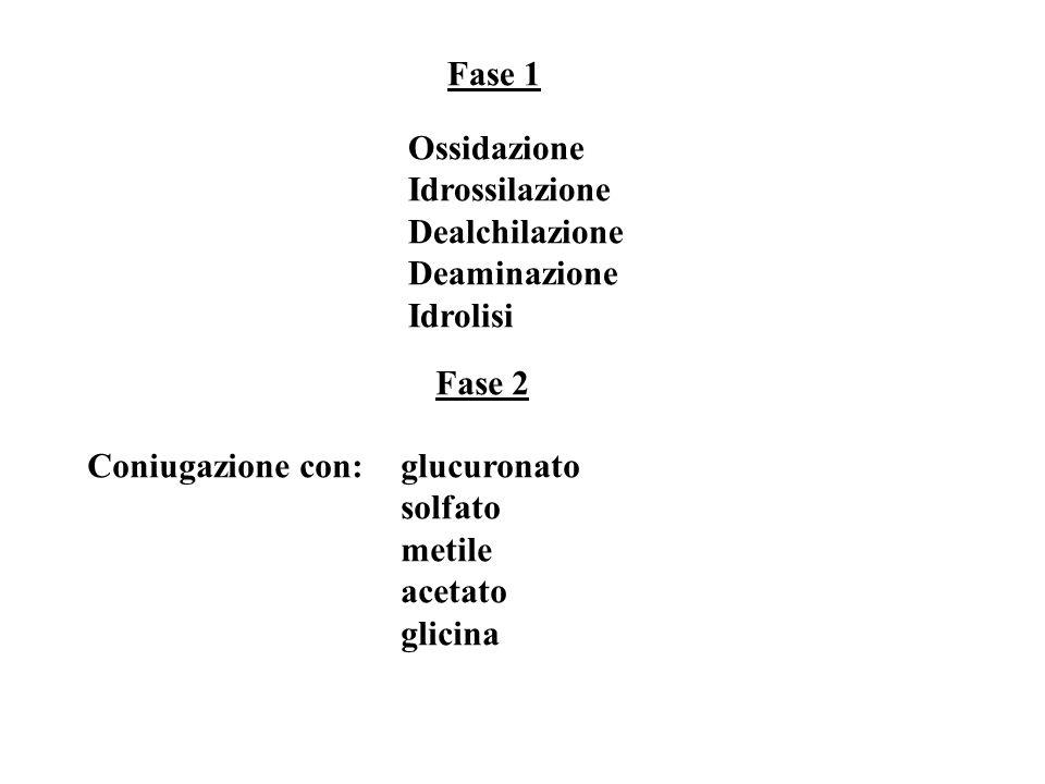 Fase 1 Ossidazione Idrossilazione Dealchilazione Deaminazione Idrolisi Fase 2 Coniugazione con:glucuronato solfato metile acetato glicina