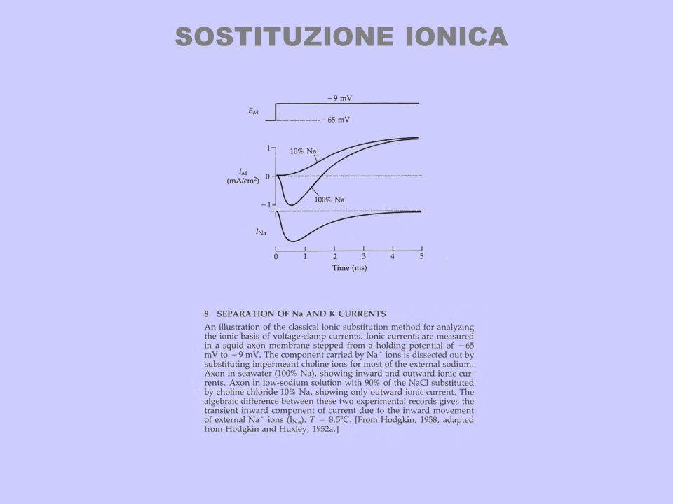 SOSTITUZIONE IONICA