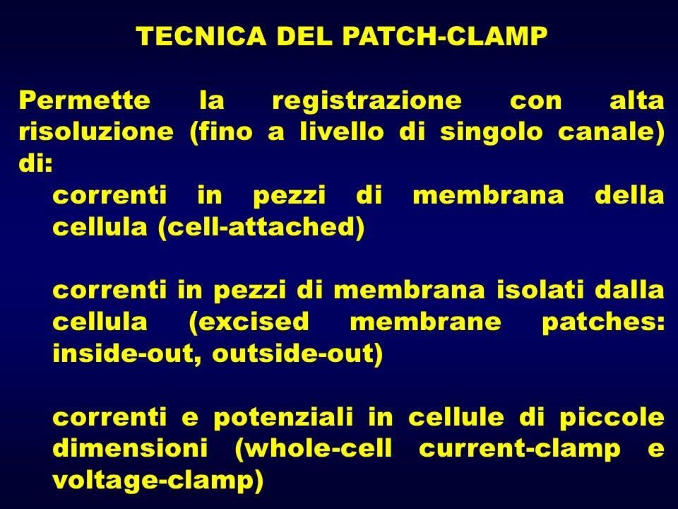TECNICA DEL PATCH-CLAMP Permette la registrazione con alta risoluzione (fino a livello di singolo canale) di: correnti in pezzi di membrana della cell