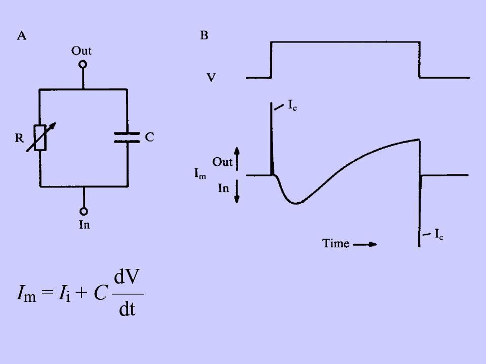 Per ogni particolare preparato cellulare la condizione di voltage-clamp si verifica quando vengono garantite le seguenti condizioni: un accurato controllo del voltaggio unadeguata velocità lisopotenzialità dellarea di membrana da cui si registra la corrente (space clamp)