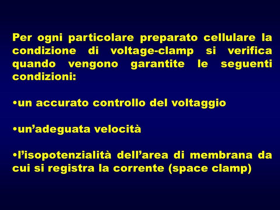 Per ogni particolare preparato cellulare la condizione di voltage-clamp si verifica quando vengono garantite le seguenti condizioni: un accurato contr
