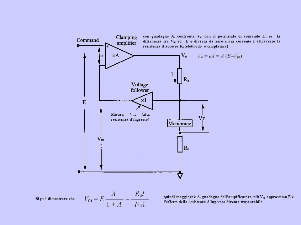 Misura V m, (alta resistenza dingresso) con guadagno A, confronta V m con il potenziale di comando E; se la differenza fra V m ed E è diversa da zero