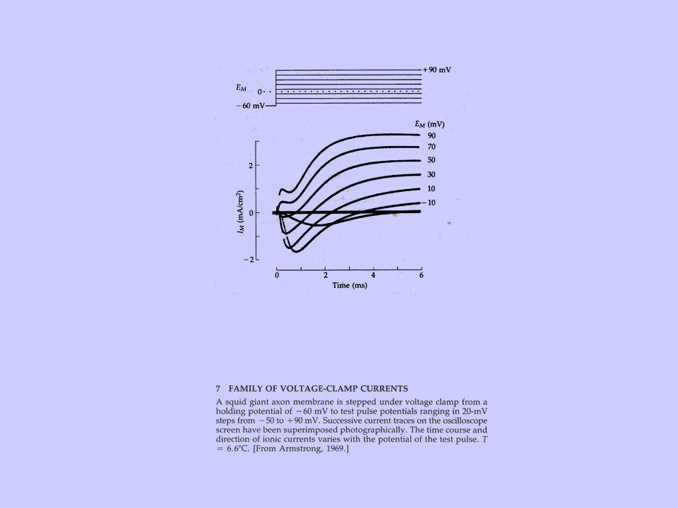 METODI DI SEPARAZIONE DELLE CORRENTI Sostituzione ionica Separazione farmacologica Protocolli di impulsi di voltaggio
