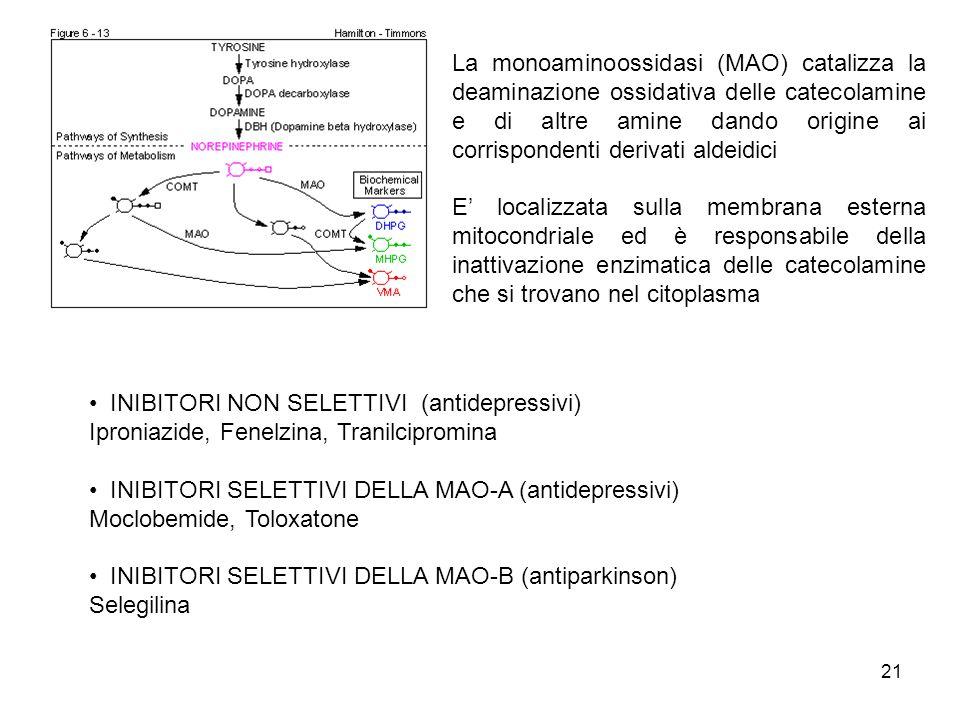 21 La monoaminoossidasi (MAO) catalizza la deaminazione ossidativa delle catecolamine e di altre amine dando origine ai corrispondenti derivati aldeid