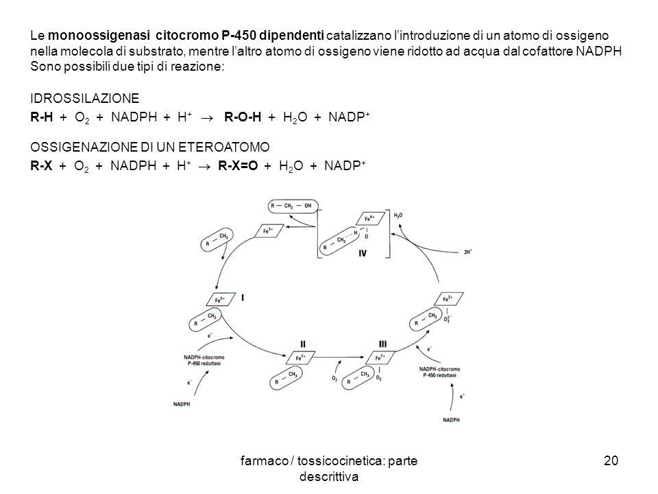 farmaco / tossicocinetica: parte descrittiva 20 Le monoossigenasi citocromo P-450 dipendenti catalizzano lintroduzione di un atomo di ossigeno nella m