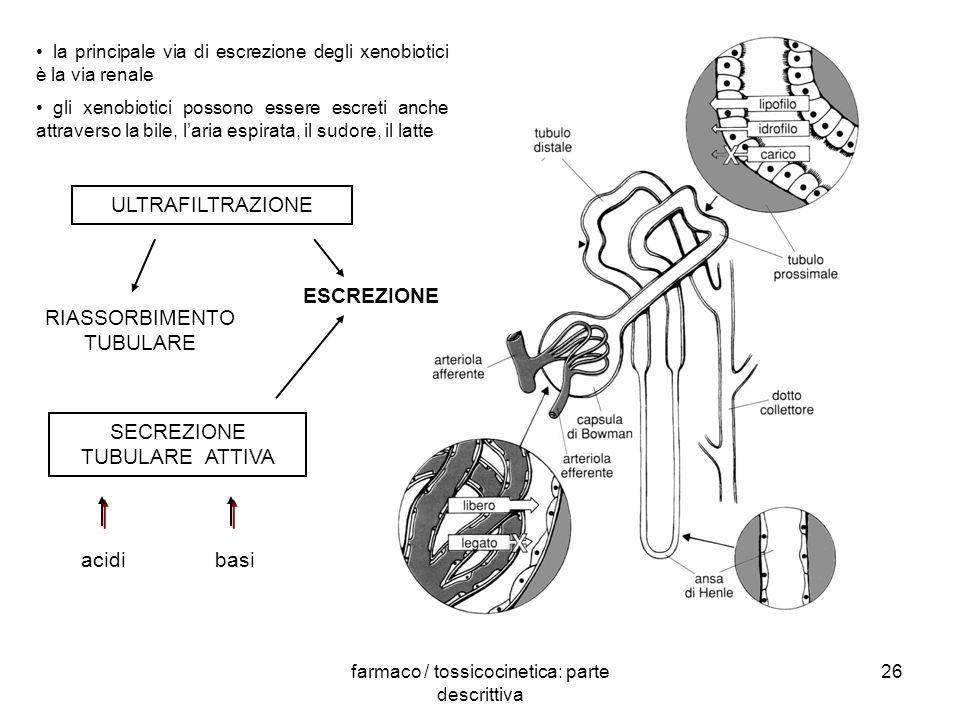 farmaco / tossicocinetica: parte descrittiva 26 la principale via di escrezione degli xenobiotici è la via renale gli xenobiotici possono essere escre
