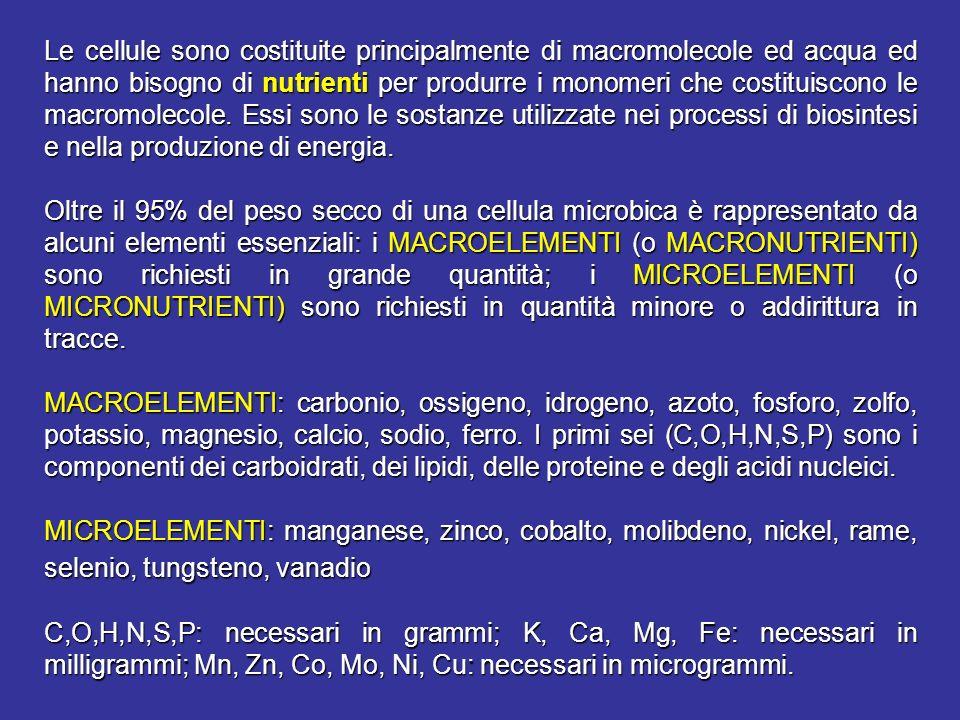 Le cellule sono costituite principalmente di macromolecole ed acqua ed hanno bisogno di nutrienti per produrre i monomeri che costituiscono le macromo