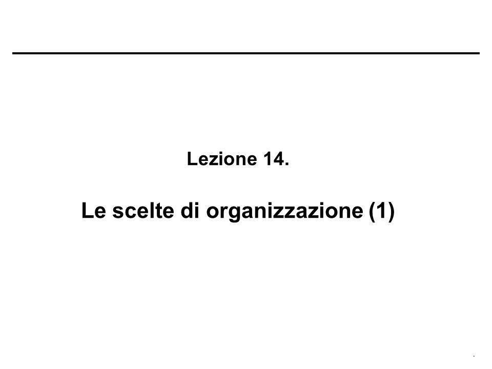 . Lezione 14. Le scelte di organizzazione (1)
