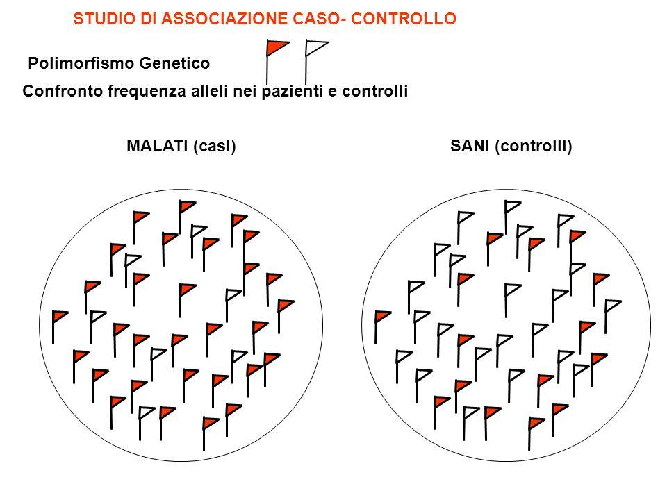 MALATI (casi)SANI (controlli) STUDIO DI ASSOCIAZIONE CASO- CONTROLLO Confronto frequenza alleli nei pazienti e controlli Polimorfismo Genetico