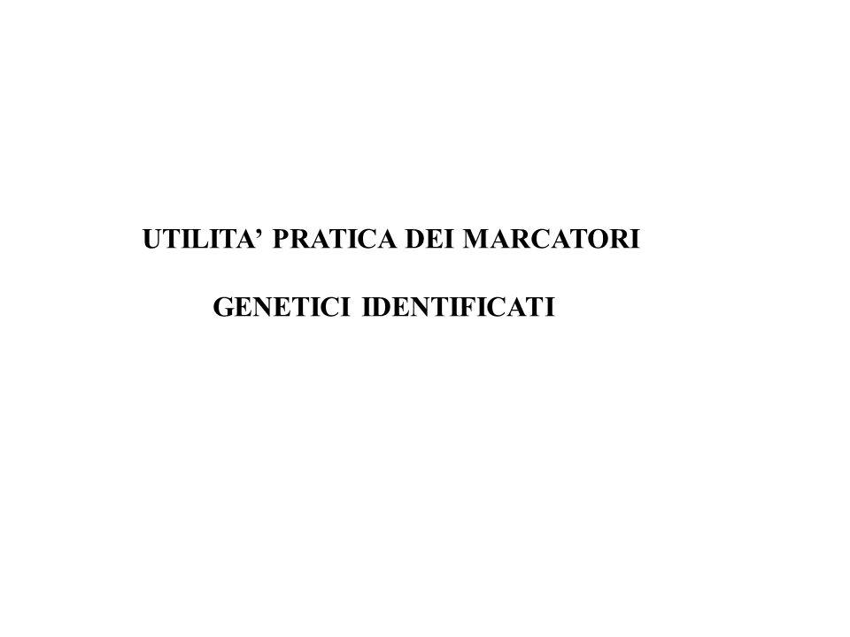 UTILITA PRATICA DEI MARCATORI GENETICI IDENTIFICATI