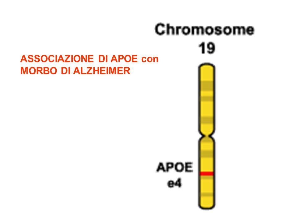 ASSOCIAZIONE DI APOE con MORBO DI ALZHEIMER
