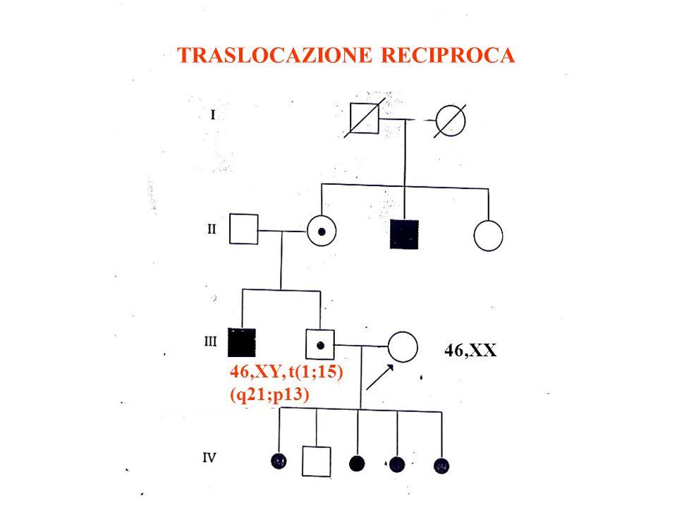 FIGLI normali traslocazione DOWN monosomia trisomia monosomia bilanciata 21 14 14 NORMALI BILANCIATI SBILANCIATI GAMETI TRASLOCAZIONE ROBERTSONIANA