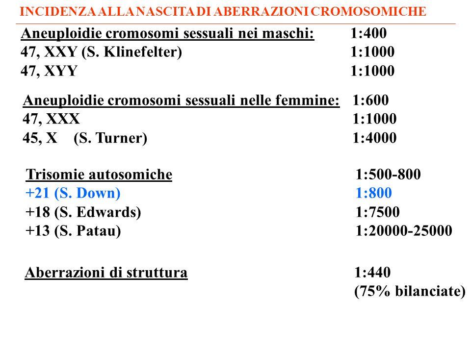 Aneuploidie cromosomi sessuali nei maschi:1:400 47, XXY (S.