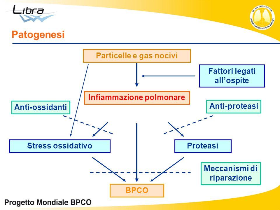 Particelle e gas nocivi Infiammazione polmonare BPCO Stress ossidativoProteasi Fattori legati allospite Anti-ossidanti Anti-proteasi Meccanismi di rip