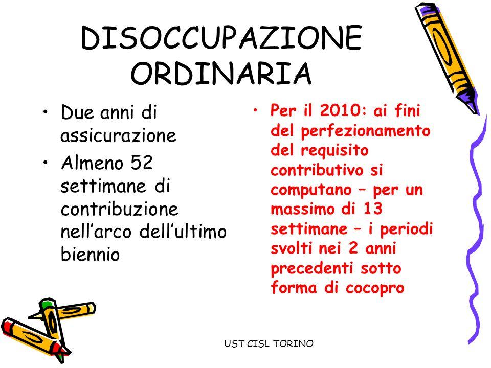 UST CISL TORINO Sostegno al reddito INDENNITA CO.CO.PRO.