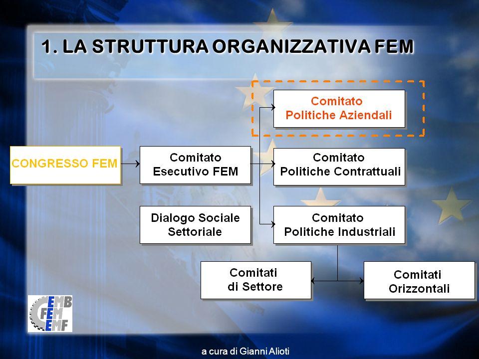a cura di Gianni Alioti 1. LA STRUTTURA ORGANIZZATIVA FEM