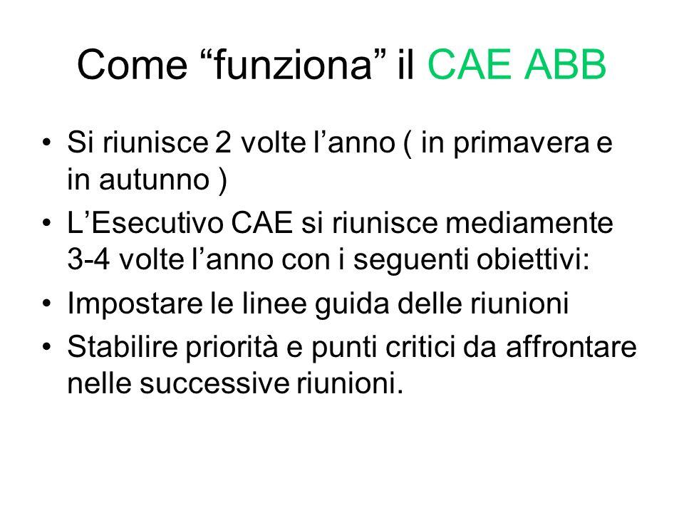 Come funziona il CAE ABB Si riunisce 2 volte lanno ( in primavera e in autunno ) LEsecutivo CAE si riunisce mediamente 3-4 volte lanno con i seguenti
