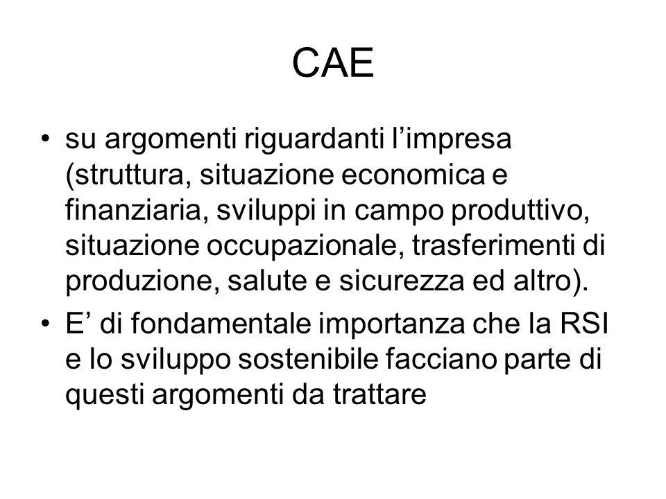 CAE su argomenti riguardanti limpresa (struttura, situazione economica e finanziaria, sviluppi in campo produttivo, situazione occupazionale, trasferimenti di produzione, salute e sicurezza ed altro).