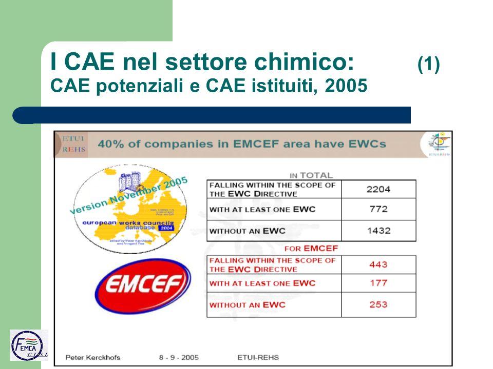 I CAE nel settore chimico: (1) CAE potenziali e CAE istituiti, 2005