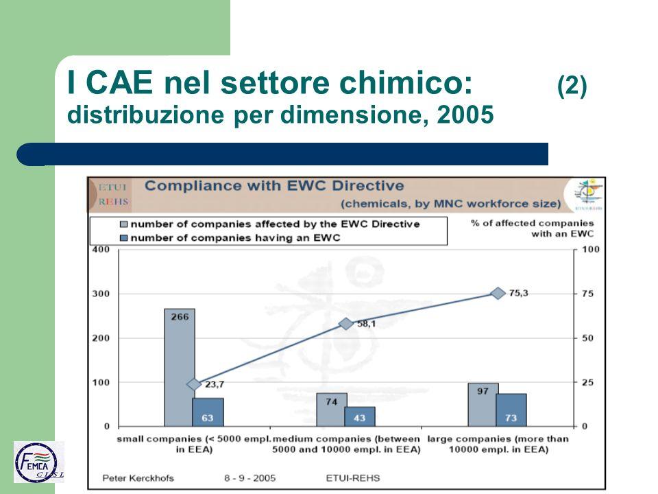 I CAE nel settore chimico: (2) distribuzione per dimensione, 2005