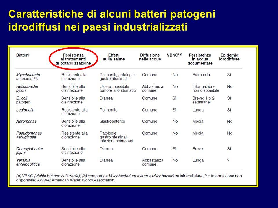 Caratteristiche di alcuni batteri patogeni idrodiffusi nei paesi industrializzati