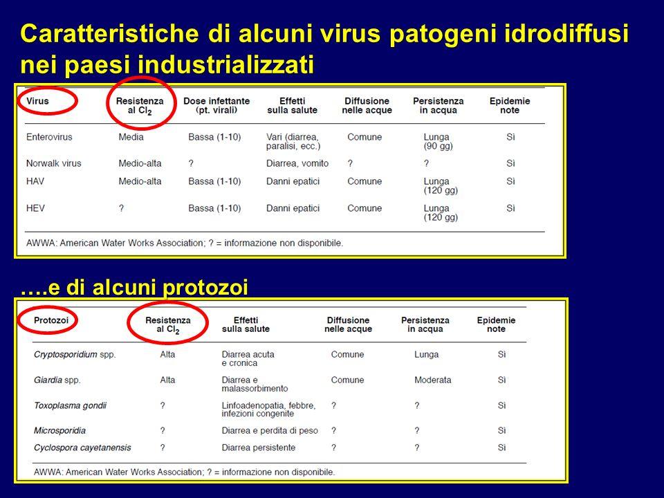 ….e di alcuni protozoi Caratteristiche di alcuni virus patogeni idrodiffusi nei paesi industrializzati