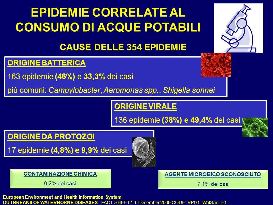 EPIDEMIE CORRELATE AL CONSUMO DI ACQUE POTABILI AGENTE MICROBICO SCONOSCIUTO 7,1% dei casi AGENTE MICROBICO SCONOSCIUTO 7,1% dei casi CAUSE DELLE 354 EPIDEMIE ORIGINE BATTERICA 163 epidemie (46%) e 33,3% dei casi più comuni: Campylobacter, Aeromonas spp., Shigella sonnei ORIGINE BATTERICA 163 epidemie (46%) e 33,3% dei casi più comuni: Campylobacter, Aeromonas spp., Shigella sonnei ORIGINE VIRALE 136 epidemie (38%) e 49,4% dei casi ORIGINE VIRALE 136 epidemie (38%) e 49,4% dei casi ORIGINE DA PROTOZOI 17 epidemie (4,8%) e 9,9% dei casi ORIGINE DA PROTOZOI 17 epidemie (4,8%) e 9,9% dei casi CONTAMINAZIONE CHIMICA 0,2% dei casi CONTAMINAZIONE CHIMICA 0,2% dei casi European Environment and Health Information System OUTBREAKS OF WATERBORNE DISEASES - FACT SHEET 1.1 December 2009 CODE: RPG1_WatSan_E1