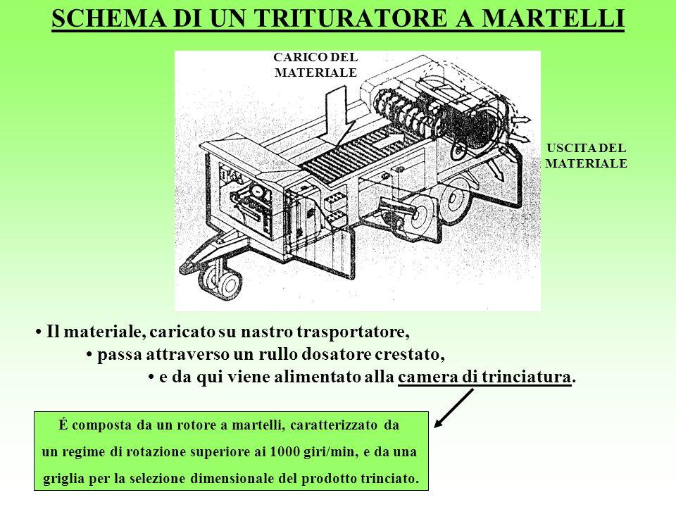 SCHEMA DI UN TRITURATORE A MARTELLI USCITA DEL MATERIALE CARICO DEL MATERIALE Il materiale, caricato su nastro trasportatore, passa attraverso un rull