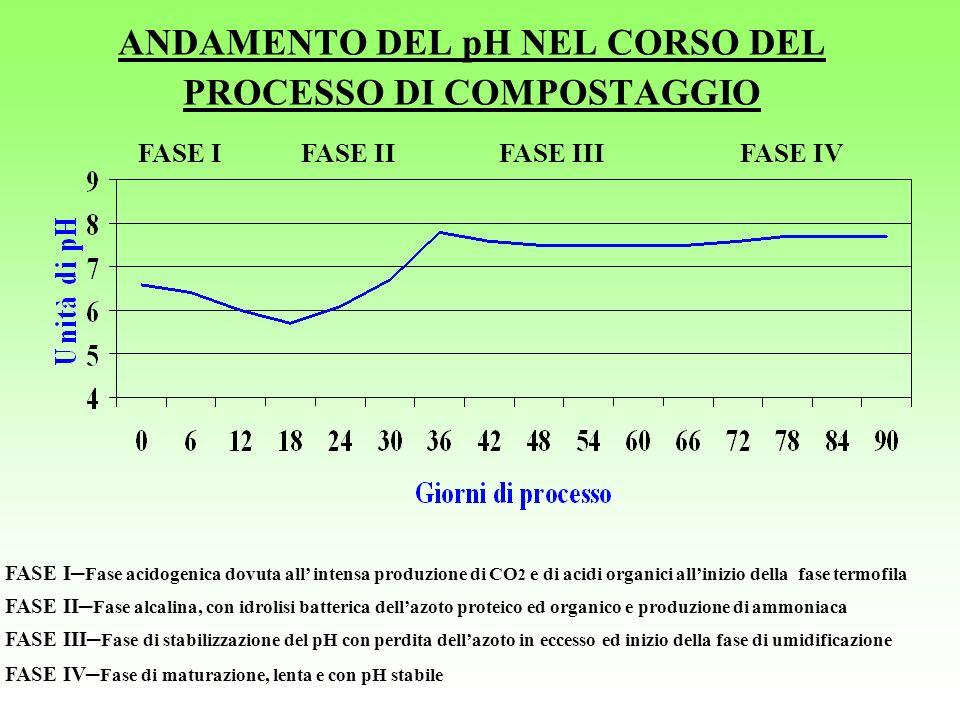 ANDAMENTO DEL pH NEL CORSO DEL PROCESSO DI COMPOSTAGGIO FASE IIFASE IVFASE IIIFASE I FASE II – Fase alcalina, con idrolisi batterica dellazoto proteic